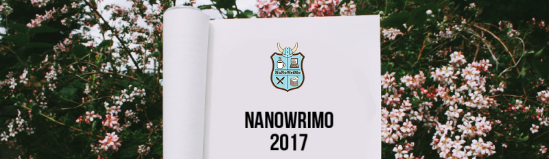 Nanowrimo 2017: A Reflection (Week 4)